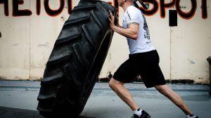 Wie funktioniert der Muskelaufbau?