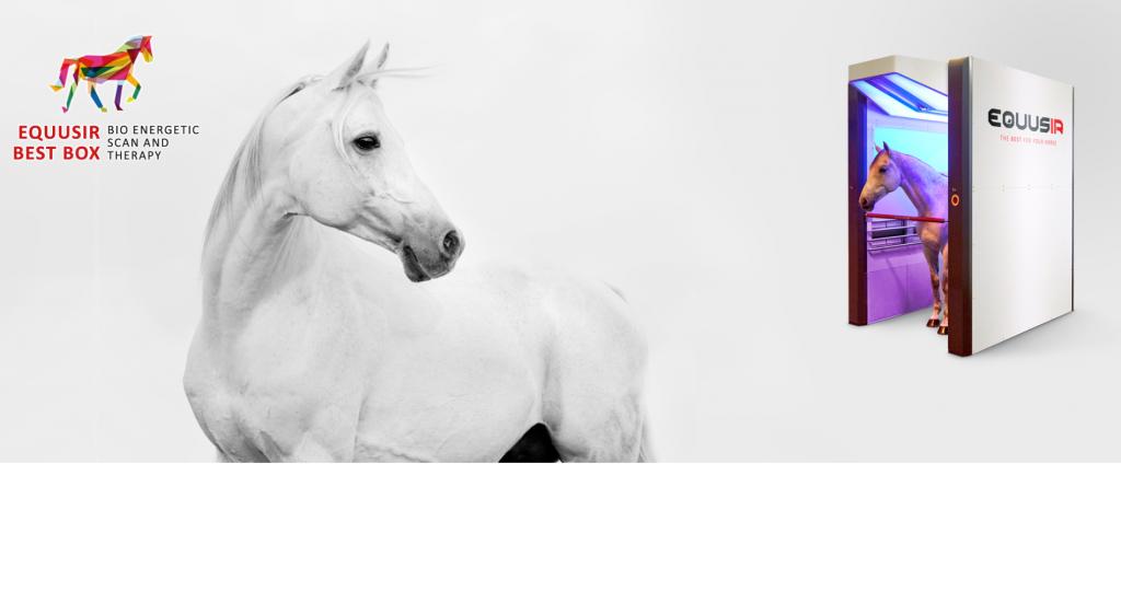 Equusir BEST Box Blockaden erkennen und auflösen Die Wirkung auf Gesundheit und Leistungsfähigkeit entsteht aus der Kombination des bioenergetischen Scans mit der Anwendung von Farblicht und Infrarot.